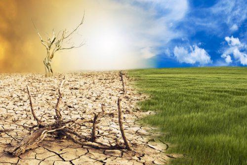 perbandingan antara alam yang sehat dan bumi yang semakin rusak