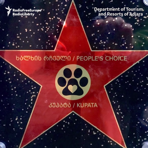 bintang penghargaan untuk anjing yang menyeberangkan warga