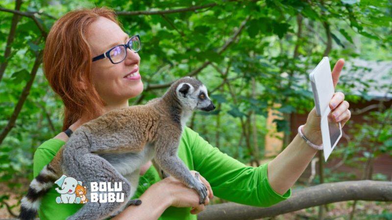 alasan mengapa selfie dengan hewan liar berbahaya