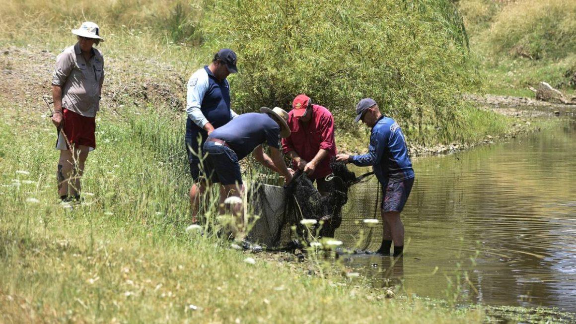 sekumpulan orang sedang berada di sungai