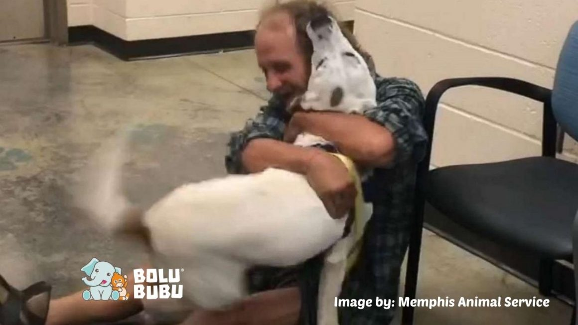 dog reunited with homeless man