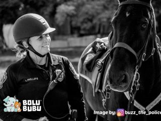 kuda polisi yang pensiun