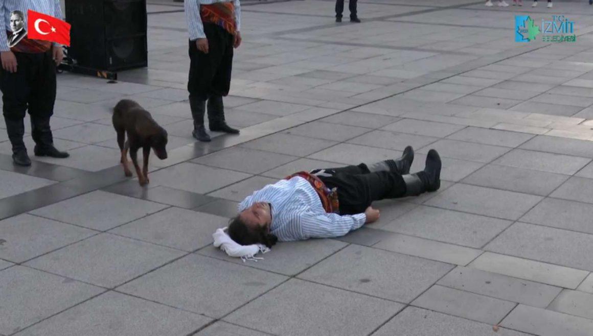 anjing liar menghampiri seseorang yang berbaring di jalanan