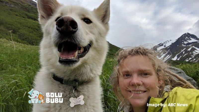 husky menyelamatkan pendaki gunung yang tuli