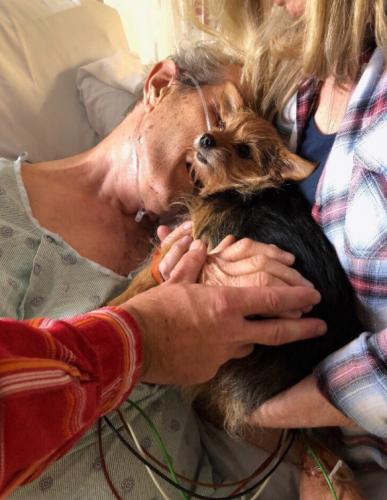 pasien memeluk anjing di rumah sakit