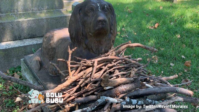makam anjing berusia 100 tahun