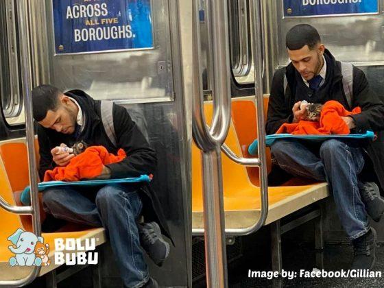 pria memberi minum kucing liar di dalam subway