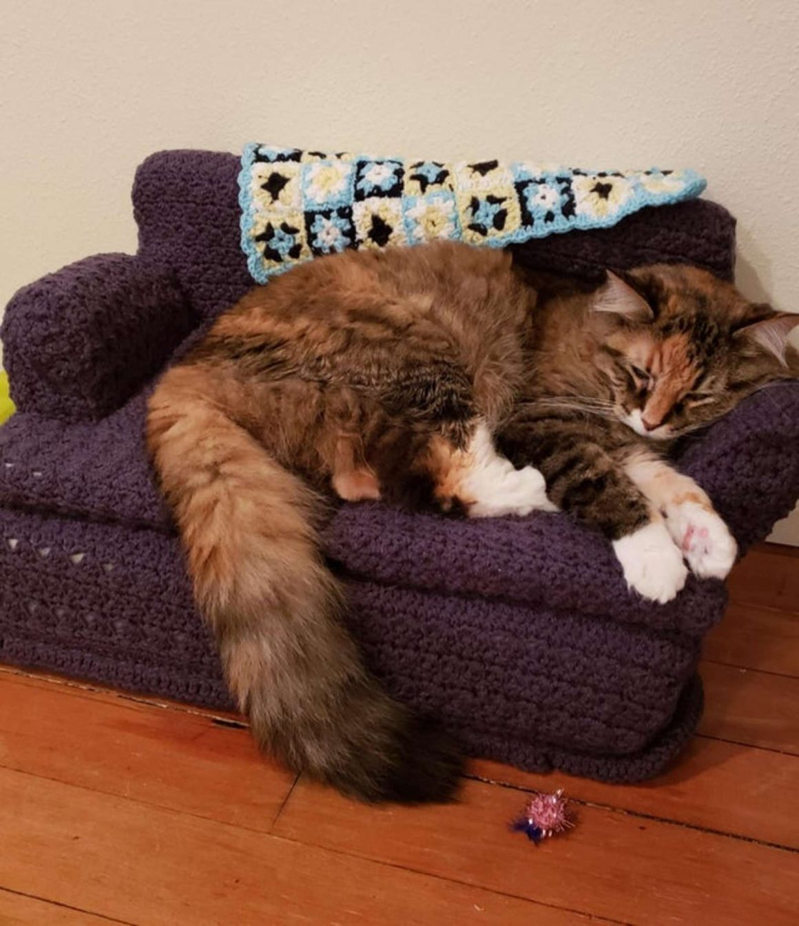 sofa mini untuk kucing