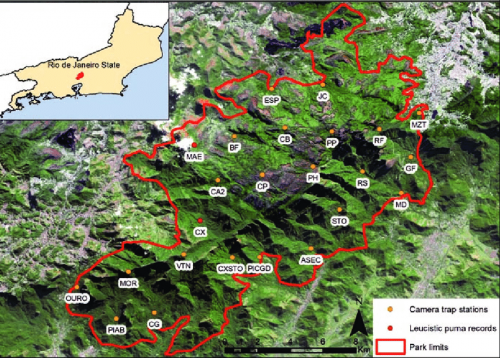peta penelitian cougar leusisme