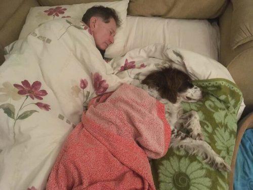 anjing tidur bersama tuannya