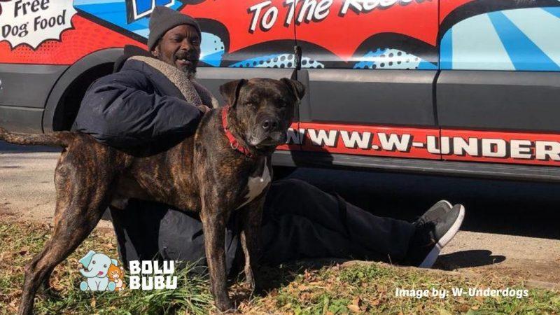 tunawisma menyelamatkan anjing shelter