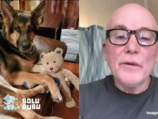 anjing adopsi yang menyelamatkan pemiliknya