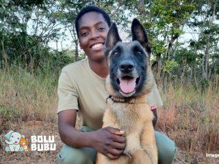 anjing K9 membantu konservasi di zimbabwe