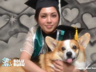 foto wisuda bersama anjing