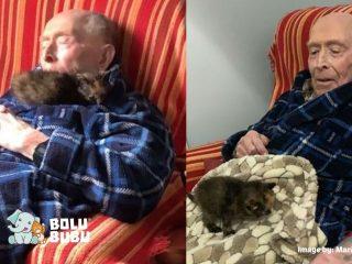 kucing dan kakek 100 tahun