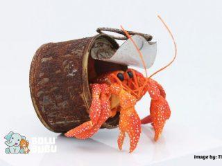 patung kertas kepiting