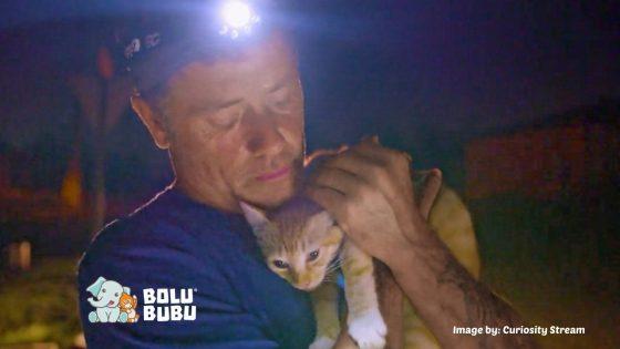 menyelamatkan hewan korban bencana