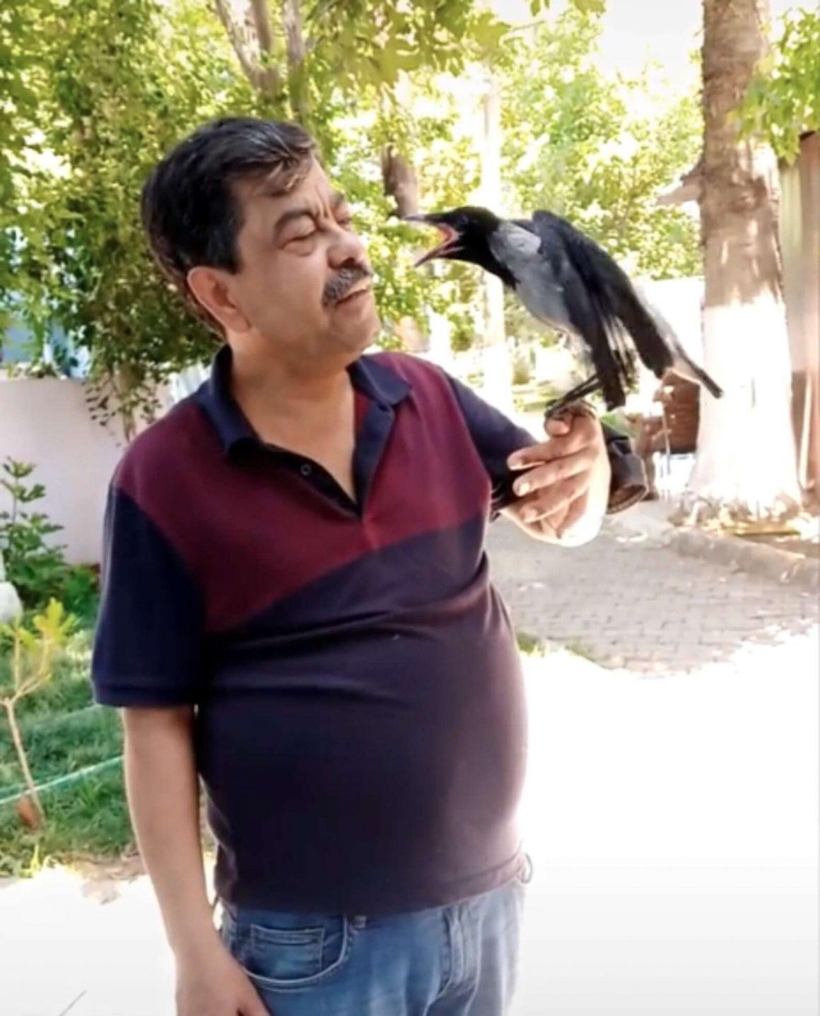burung gagak dan pemiliknya